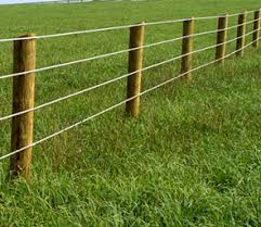 High Tensile Wire Agricultural Fence Custom Fence Oviedo