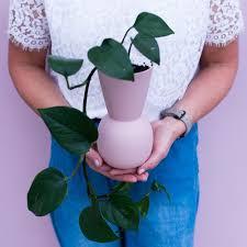 Flowerbowl - Geelong Florist - IVY BELL