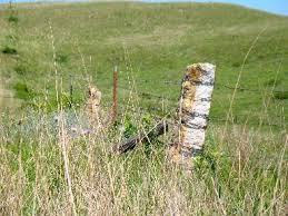 Kansas Post Rock Fences