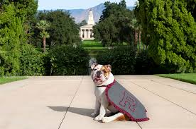 What a difference a year makes | University of Redlands