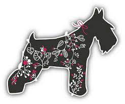 Miniature Schnauzer Floral Car Bumper Sticker Decal 5 X 4 Ebay