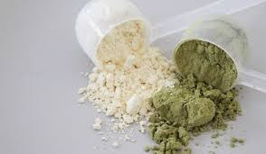best tasting protein powder for weight