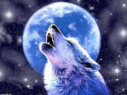 awesome wolf howling wallpapers wolf