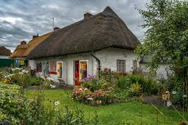 wallpaper ireland adare limerick bush