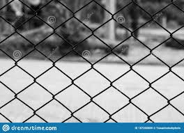 Decorative Wire Mesh Of Fence In The Garden Stock Photo Image Of Fence Green 187260800