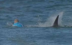 Mick Fanning Speaks About Shark Attack ...