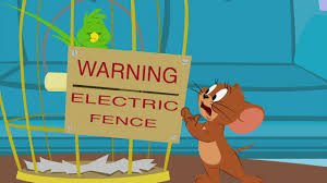 Tom And Jerry Electric Fence Youtube