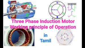 three phase induction motor working