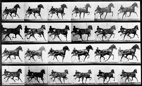 June 15, 1878: Muybridge Horses Around With Motion Pictures | WIRED