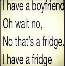 i have a fridge no boyfriend funny quotes