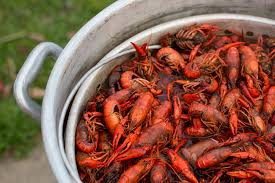 Boiling Basics: How to Boil Crawfish ...