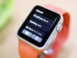 apple watch in india 12 things you