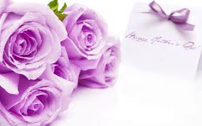 bow violet purple roses flowers holiday