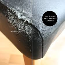 how to repair cat scratched leather in