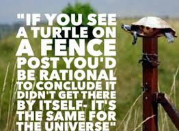 A Turtle On A Fencepost Coffeebreak With The Word