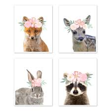Floral Woodland Forest Animal Wall Art Prints Room Decor For Baby Nursery And Kids By Sweet Jojo Designs Set Of 4 Fox Deer Bunny Raccoon Blush Pink Shabby Chic Watercolor