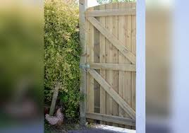 Grange Arched Featheredge Value Tall Garden Gates Awbs