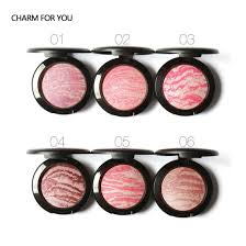 china oem makeup blusher private label