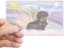 Amazon Com Cafepress Wire Haired Dachshund Angel Rectangle Sticker Rectangle Bumper Sticker Car Decal Home Kitchen