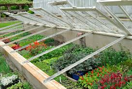 cold frame extend your vegetable