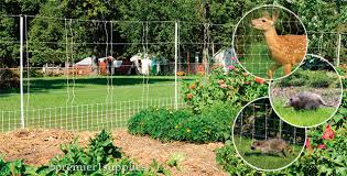 electric fence and netting for garden