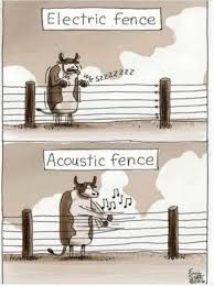 Cow Electric Acoustic Fence Cartoon Electric Fence Acoustic Pictures Of The Week