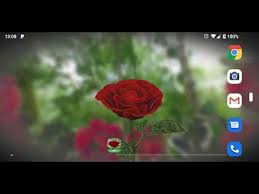 3d rose live wallpaper free apps on