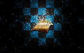 sport logo nfl glitter checd