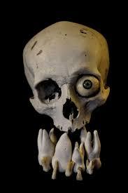 Epingle Par Pauline Mop Sanchez Sur Bones Dessin Et Crane