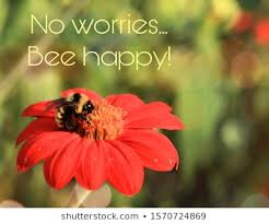 bee quotes stock photos images photography shutterstock