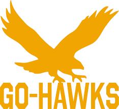 Wsr Go Hawk Vinyl Decal Vision2vinyl
