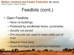 Beef Cattle Housing And Equipment Ppt Download