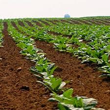 soil types grabco