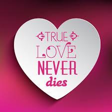 true love never s background vector