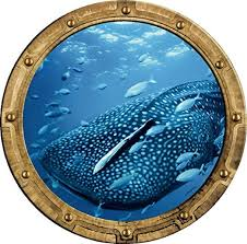 Amazon Com 18 Port Scape Whale Shark Porthole Rustic 3d Window Wall Decal Instant Under The Sea Water Ocean Fish Childrens Wall Art Kids Room Nursery Decor Removable Fabric Vinyl Peel And Stick