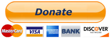 PayPal-Donate-Button-PNG-Transparent-Image-420x147 - Wake ...