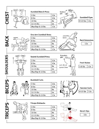 health and fitness workout routines