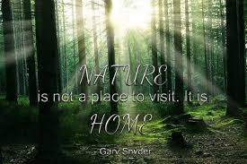nature is not a place to it is home gary snyder green