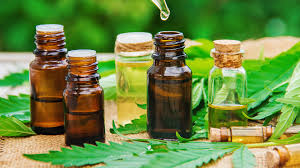 Can CBD Oil Provide Health Help Without the High?