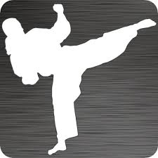 Taekwondo Girl Car Decal Die Cut Vinyl Tkd Stickers Vinyl Taekwondo Decals