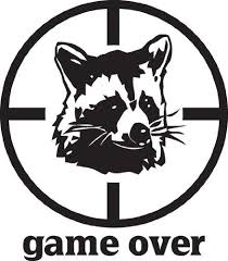 Amazon Com Car Stickers Decals Game Over Racoon Sticker 3 4 Inch White Automotive
