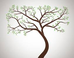 Family Tree Wall Decal Decalmywall Com
