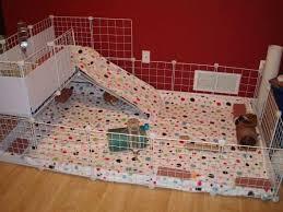 23 epic homemade diy guinea pig cage