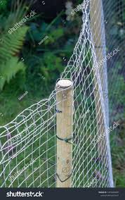 Post Chicken Wire Fence Built Contain Stock Photo Edit Now 1479400628
