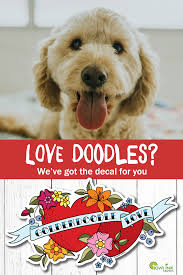 Beautiful High Quality Vinyl Sticker For The Goldendoodle Owner Large Colorful Decals For Your Car Window Or Lap Dog Stickers Dog Decals Funny Dog Pictures