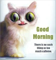 funny good morning quotes