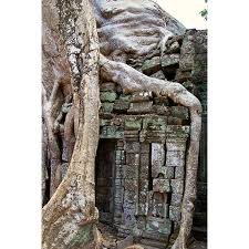 Peel N Stick Poster Of Temple Unesco Cambodia Angkor Wat Asia Siem Reap Poster 24x16 Adhesive Sticker Poster Print Walmart Com Walmart Com