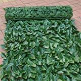 Welsh Green Screen Large Ivy Artificial Screening Leaf Hedge Panels On Roll Privacy Garden Fence Green 2 0m X 3m Amazon Co Uk Garden Outdoors