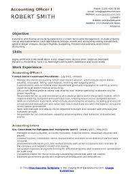 accounting officer resume sles