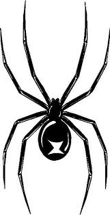 Black Widow Spider Vinyl Decal Car Window Bumper Sticker 4 Size 14 Colors